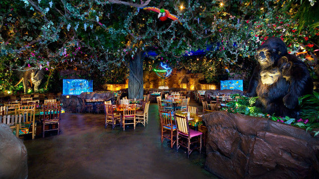 Rainforest Cafe at Disney's Animal Kingdom