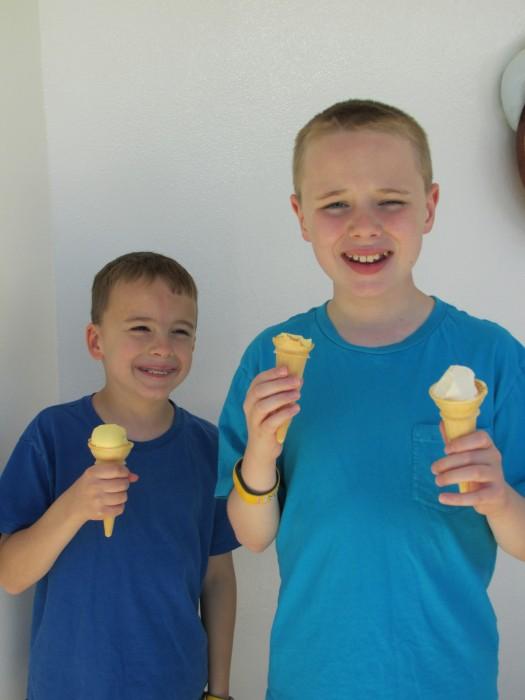 Disney Wonder Ice Cream