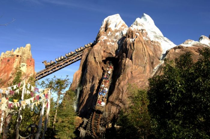 Top 5 Highest Rated Animal Kingdom Attractions for Adults Expedition Everest