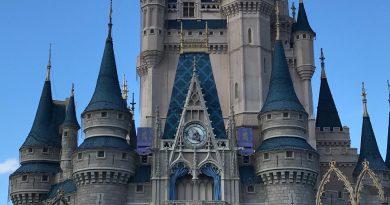 Taste of Magic Kingdom Park VIP Tour
