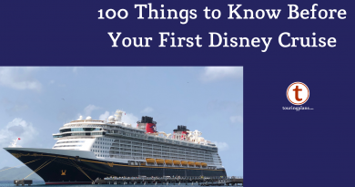10 Tips For Good Show Etiquette On A Disney Cruise Touringplans Com Blog