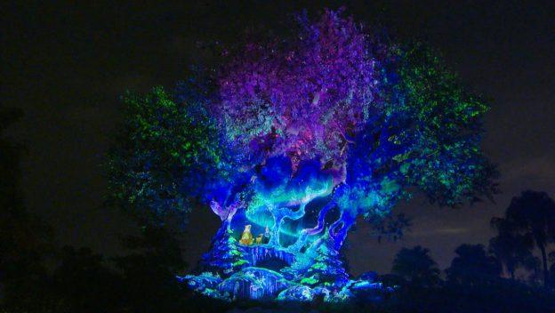 Image result for tree of life animal kingdom winter