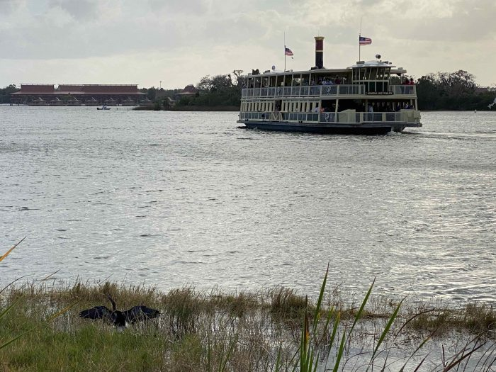 Seven Seas Lagoon ship and anhinga