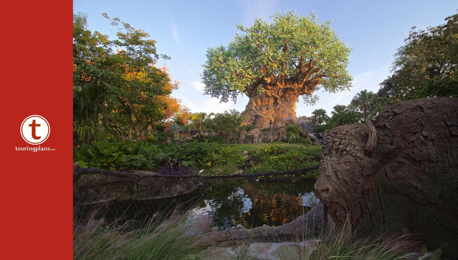 10 Reasons To Love Disney S Animal Kingdom On Its 22nd Anniversary Touringplans Com Blog