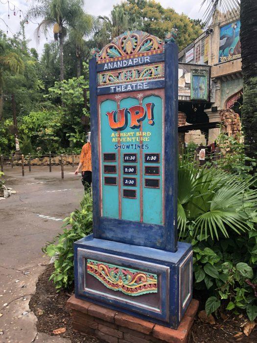 UP Is Away–New Bird Show at Disney's Animal Kingdom