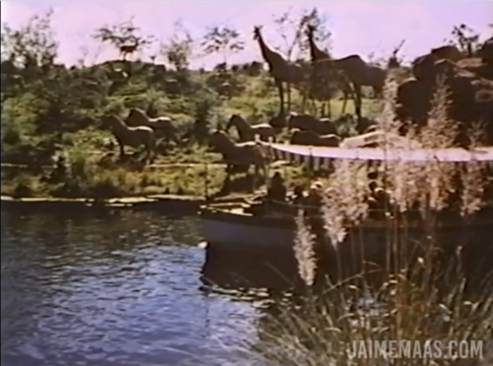 Vintage photo of the Jungle Cruise with a lack of foliage.