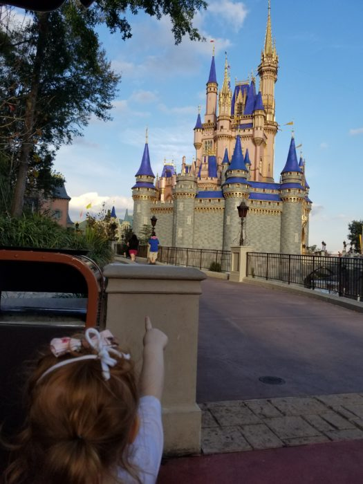 The back of a small child is in the foreground as it points across a bridge to Cinderella Castle, which dominates the background.