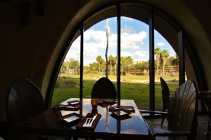 Window overlooking the savanna