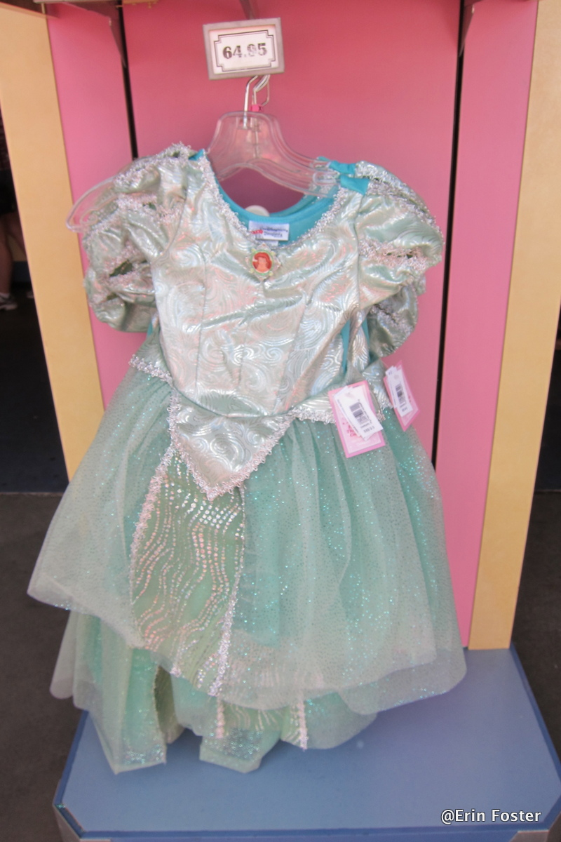 Everything You Ever Wanted to Know About Princess Dresses at Disney ...