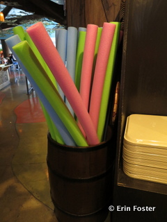 Pool noodles for sale at The Mara, the quick service restaurant adjacent to the main pool at the Animal Kingdom Lodge.