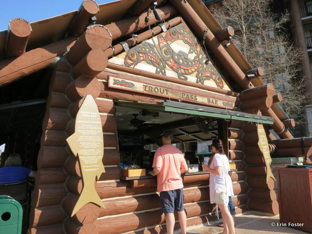Wilderness Lodge, Trout Pass bar