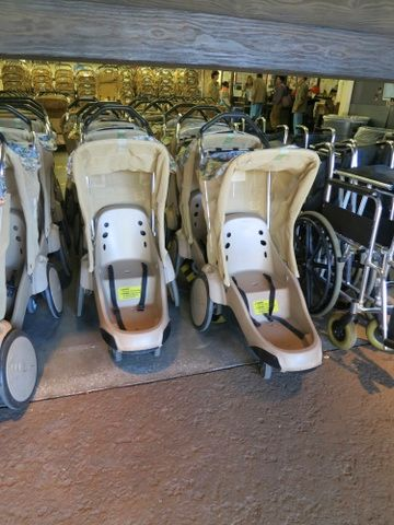 Typical Walt Disney World single rental stroller