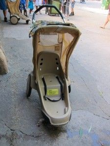 Disney rental strollers are not very comfortable. You'll probably want to bring your own.