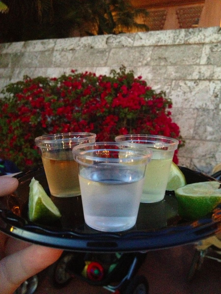 Hydrate before trying this tequila flight in the Mexico Pavilion