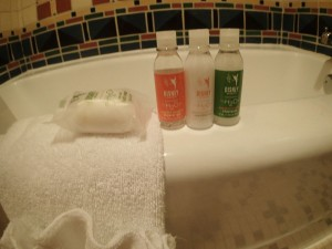 H2O products at the Disney resort hotels.