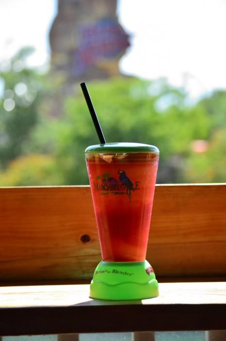 Margaritaville_Blender