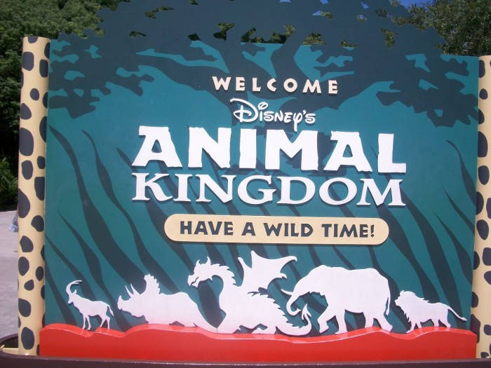 Animal Kingdom Sign - A Glass Slipper Vacation