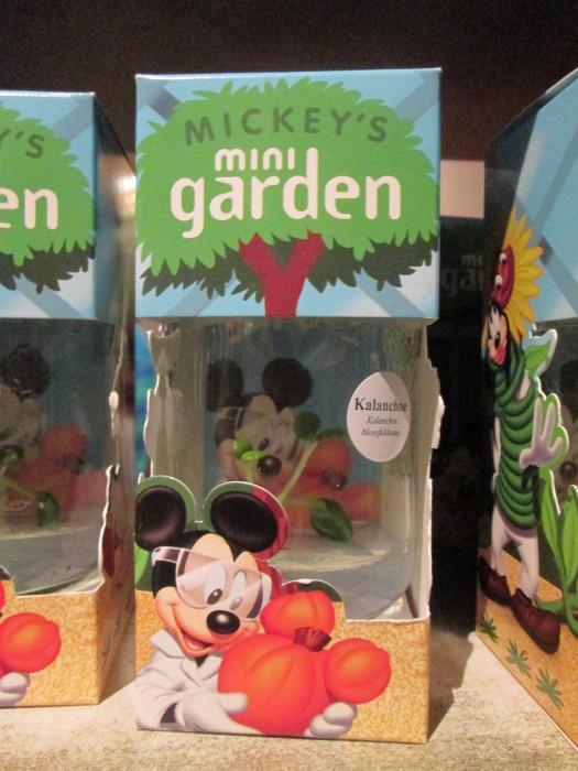 Mickey's Mini Garden