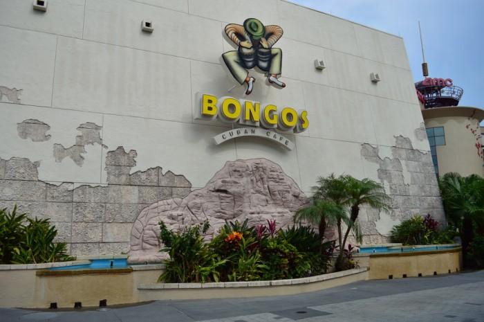 Bongos_side