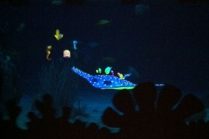 Seas with Nemo and Friends features Mr. Ray, a perfect place for Toddlers at Epcot