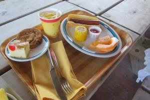 Sample plate from Castaway Cay