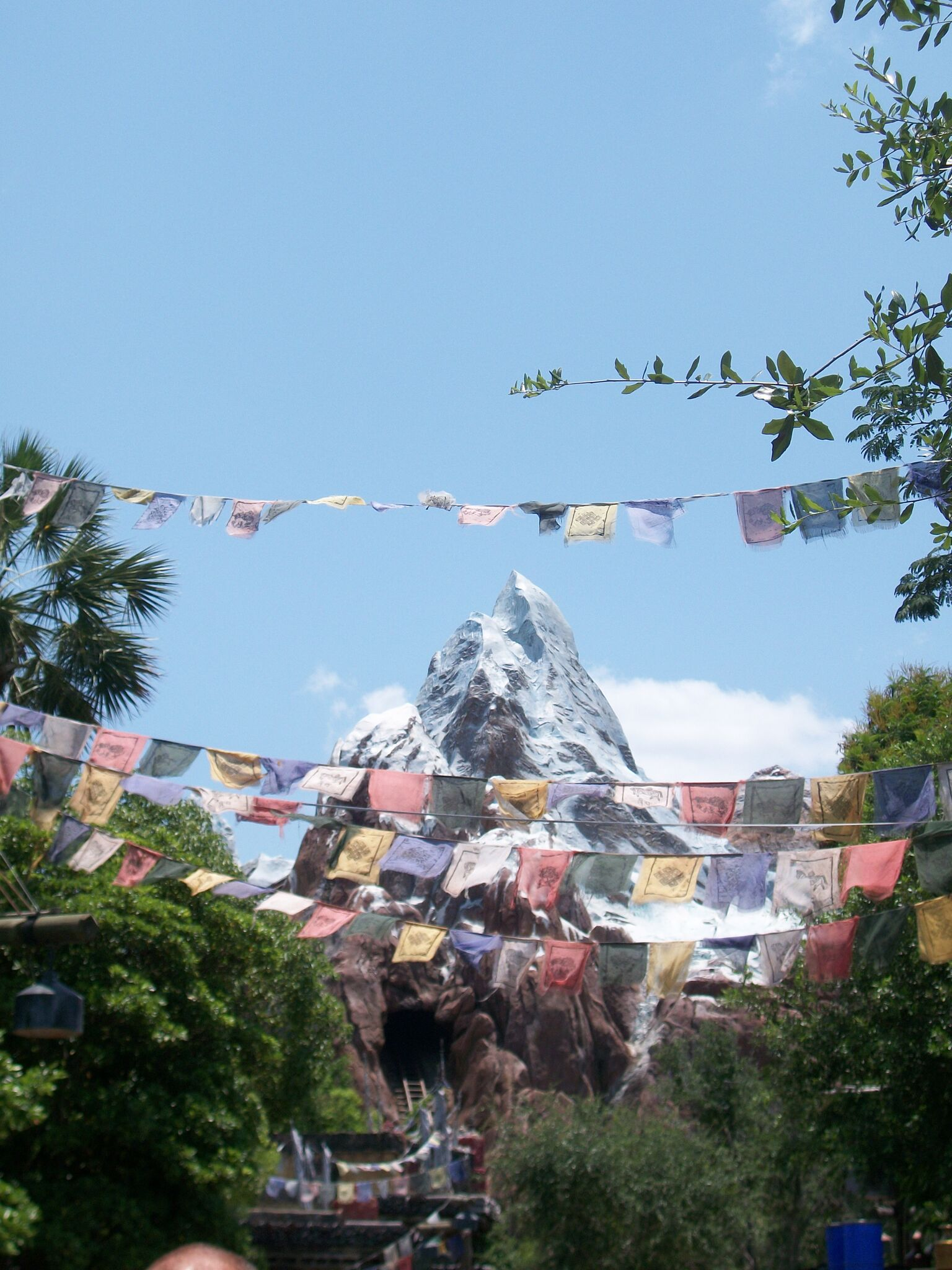 disney s expedition everest Please login to your account, or register a new account if you do not have one when you view this website without logging in, you are viewing this site in guest.