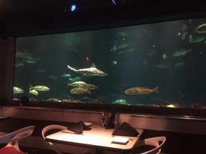 The décor at Sharks Underwater Grill is subtle and intimate.