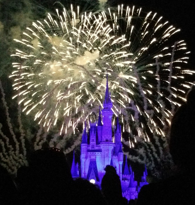 There are plenty of great views of Wishes that do not require you to use a FastPass+