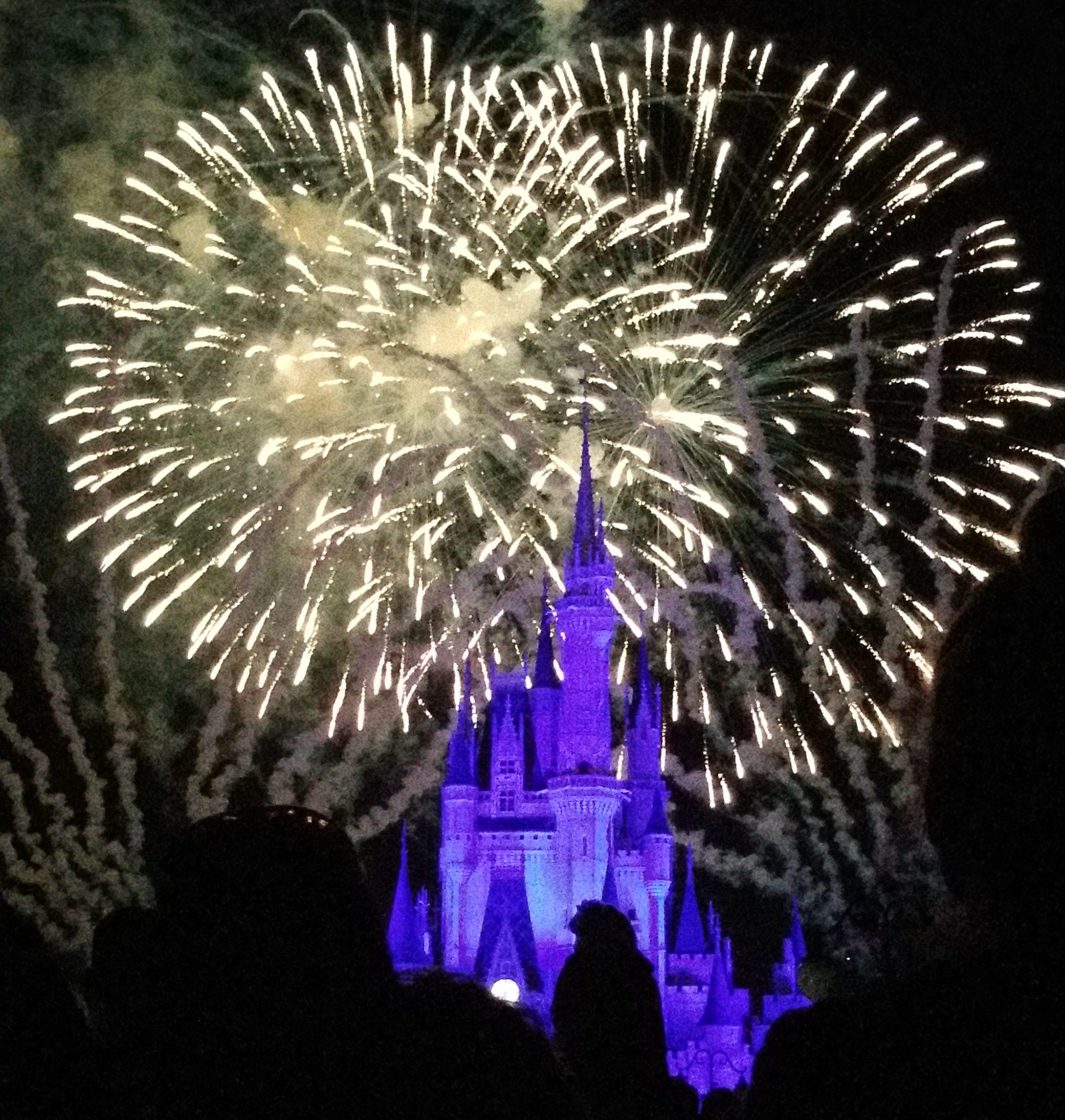 There are plenty of great views of Wishes that do not require you to use a FastPass