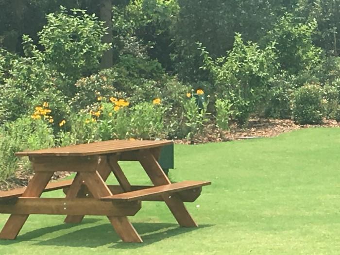 Fantasyland picnic spot