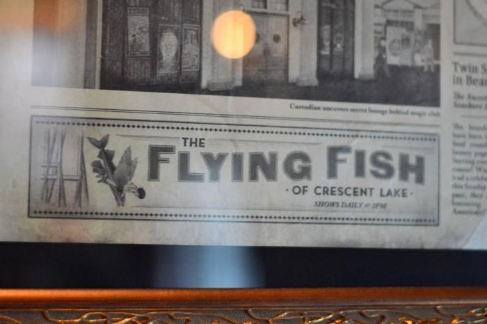 Abracadabar_flyingfish