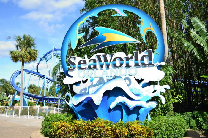 six reasons you need to check out seaworld orlando. Black Bedroom Furniture Sets. Home Design Ideas