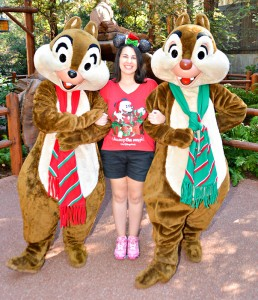 DCA Holiday Chip and Dale