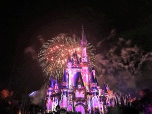 Happily Ever After - Pink Castle