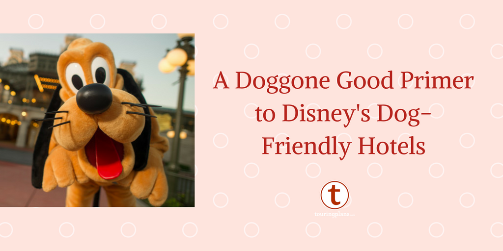 A Doggone Good Primer To Disney S Dog Friendly Hotels Touringplans